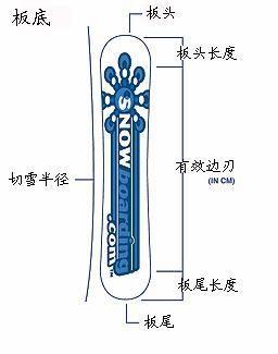 滑雪板结构
