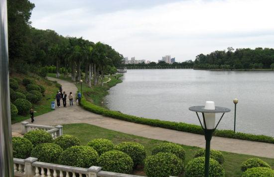 舜华三山市级森林公园