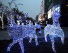 济南街头圣诞氛围浓