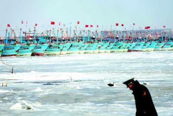 在青岛市胶州湾西大洋社区北码头,大量的渔船被冰封住。