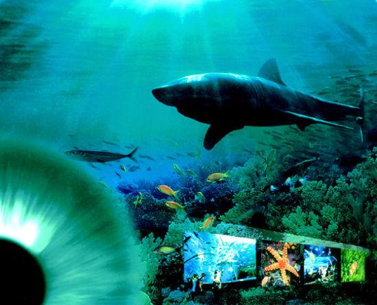 青岛海底世界景观