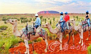 骑骆驼体验日出之旅
