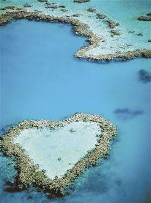 在大堡礁 感受南半球的光怪陆离