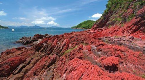 拥有许多地质奇观的香港地质公园,2008年才正式对外开放。