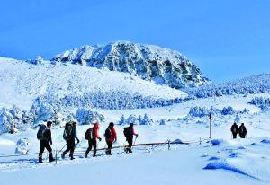 冬日的汉拿山一片纯白美景