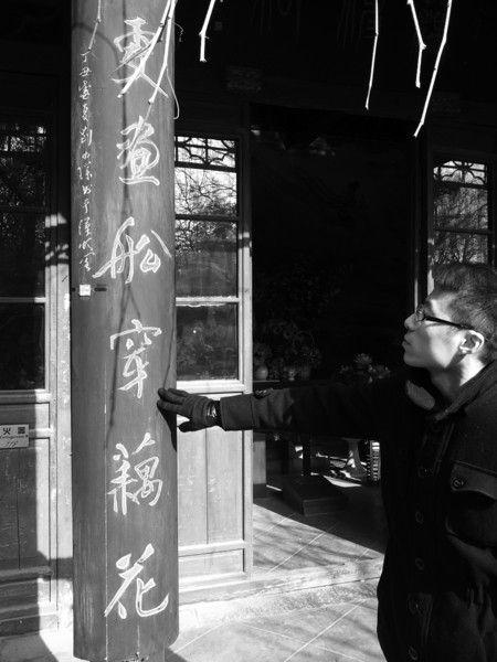 泉城的的荷花文化气息由来已久(资料片) 记者刘畅摄