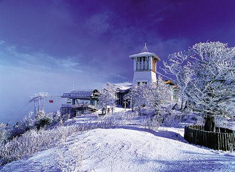 济州岛雪景