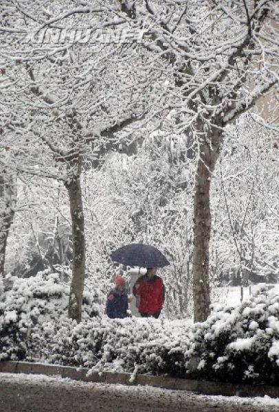 在济南市区,市民在大雪中出行。