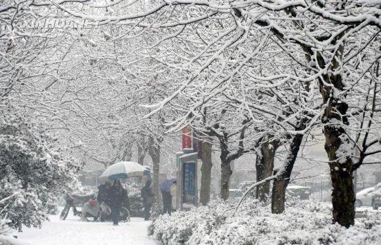 济南大寒迎降雪