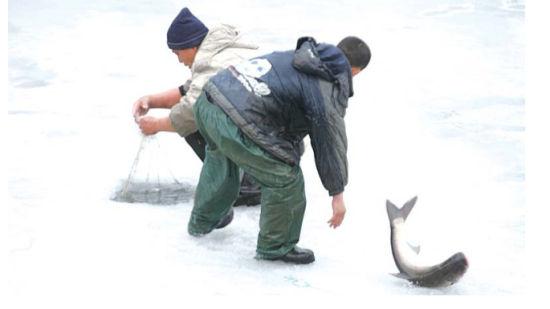 芝罘区塔山水库破冰捕鱼