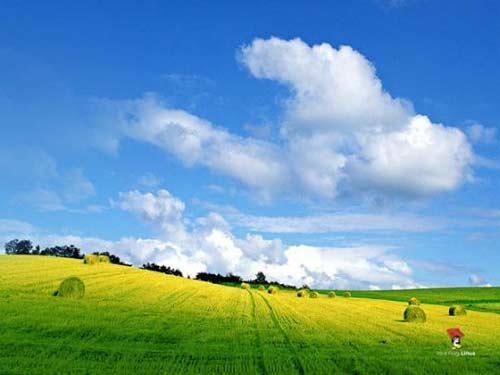 普罗旺斯的天空