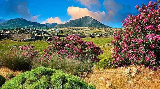 希腊纳克索斯岛