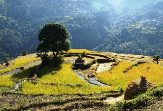 尼泊尔安娜普纳山