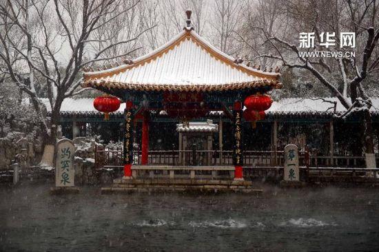 这是雪中的济南趵突泉(2月5日摄)。 新华社记者 郭绪雷 摄