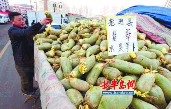 2月16日,在昌乐路文化街,不少摊主早早运来萝卜开卖。记者 王滨