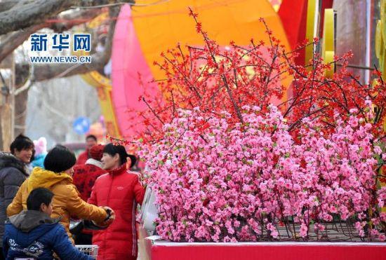 2月19日,在济南市长清区灵岩路上,市民在欣赏花灯。新华社记者 徐速绘 摄