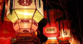 济南市动物园:蛇年生肖文化节