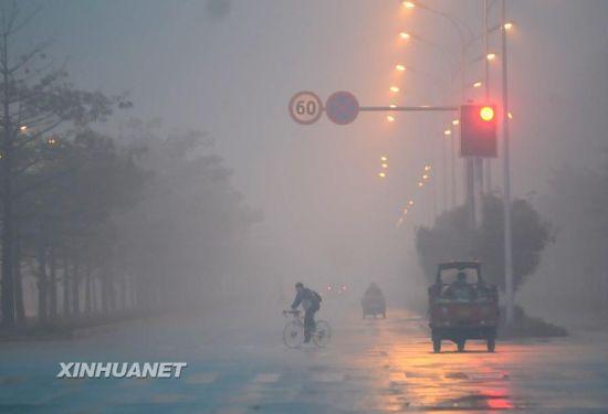 2月25日,市民在大雾笼罩的广西柳州街头出行。