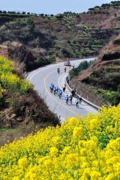 骑单车赏山花