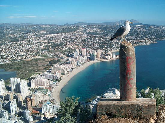 卡尔佩所在的半岛是西班牙东部最美丽的半岛之一,半岛两岸聚集了
