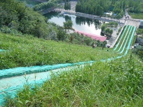 广州——圭峰山滑草场