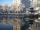 高清组图:京城降雪迎春分