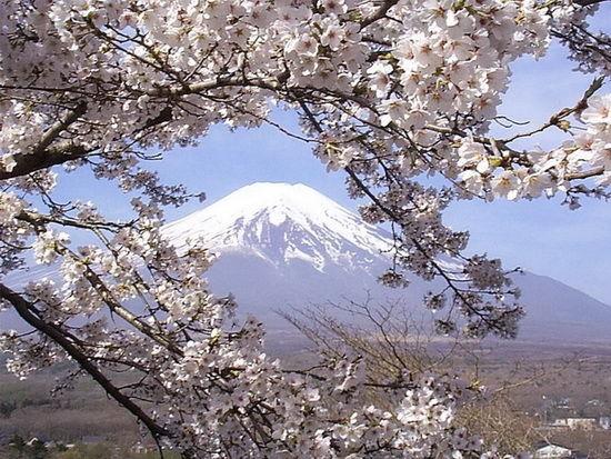 日本风情(网络图片)