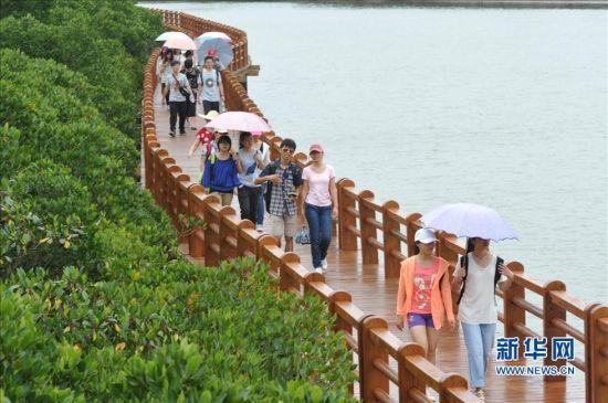 3月23日,游客在海口市东寨港水上栈道示范段散步游览。