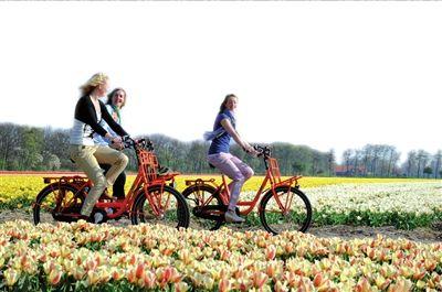 花漾春天寻色之旅