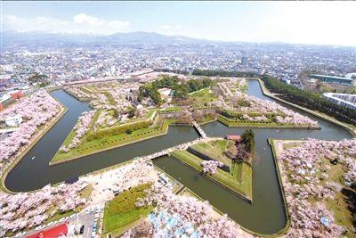 樱花俯瞰图日本国家旅游局供图。