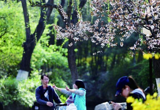 昨日,省城的最高温达到了21.2℃,不少人换上了轻便装来到户外踏青放松 记者傅琪媛摄