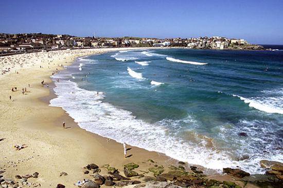 悉尼的海滩 澳大利亚