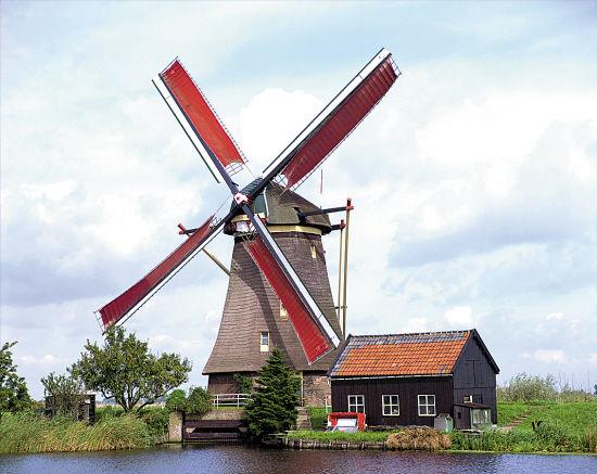 荷兰风车 全景/供图