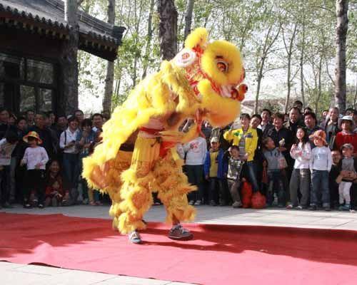 千佛山庙会14日迎来高峰,图为精彩的舞狮子。