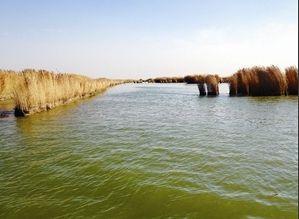 青海湖区 美景迷人