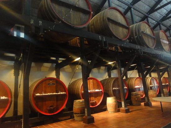 猎人谷葡萄酒学校