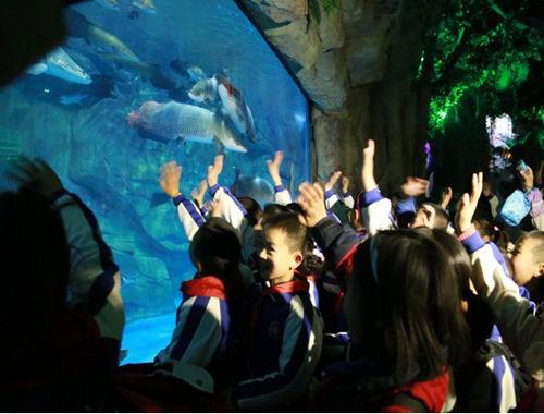 小学生在热带雨林观看来自亚马逊河流域的巨无霸——巨骨舌鱼。