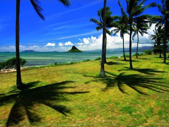 全美幸福感地图:夏威夷最快乐
