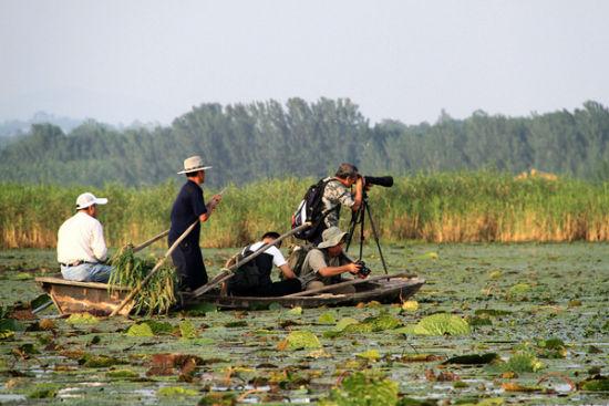 东平湖湿地公园