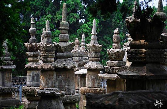 灵岩寺的塔林规模也是很大的