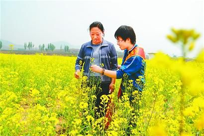 大学生志愿者搀扶残疾人观赏油菜花 记者张传笙 摄