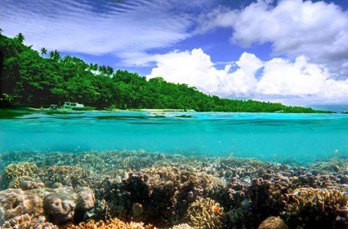 世界上最自然的海洋世界