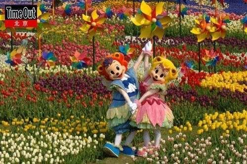 """寻找爱宝乐园里的""""秘密花园"""""""