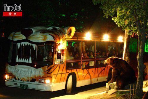 """乘""""老虎""""车,挺进爱宝乐园里的野生动物世界。"""