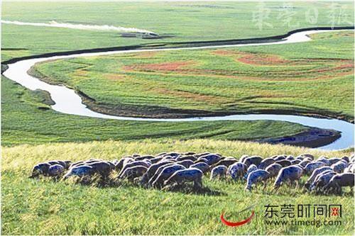 草原上蜿蜒的河流