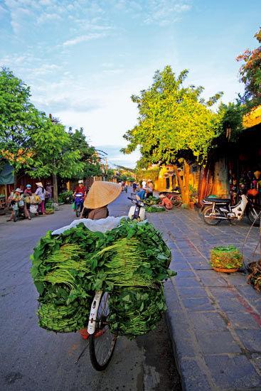 卖菜的越南妇女