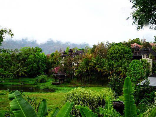 丛林环绕的栋栋小屋