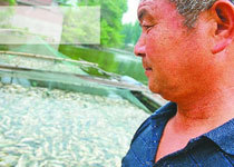 济南高新区水库4万条鲤鱼死亡
