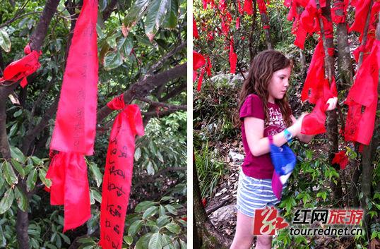 """天门山""""红树林""""里也常常有外国游客留下笔迹"""