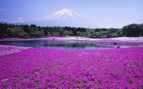 日本,北海道